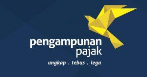 Tax Amnesty Smart Consultant